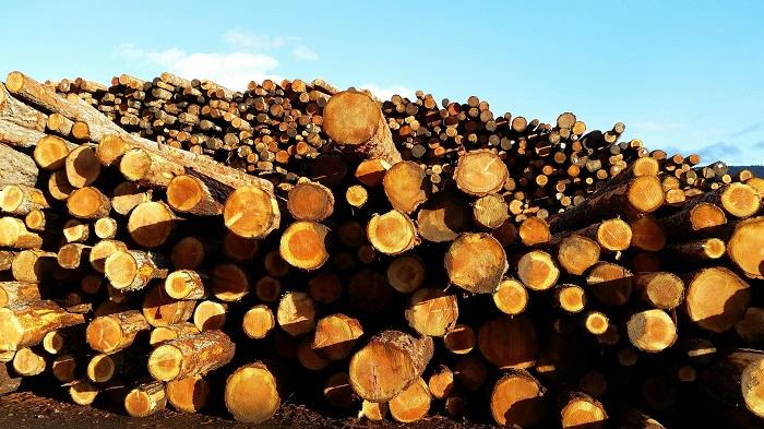 Kotly na drevo a jeho výhody a nevýhody
